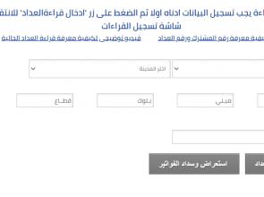 ادخال قراءة عداد الغاز المنزلي الشركة المصرية لتوزيع الغاز